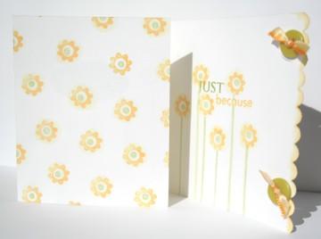 020507_first_fold