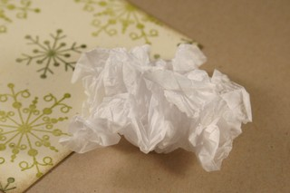 101307_crumpled_tissue