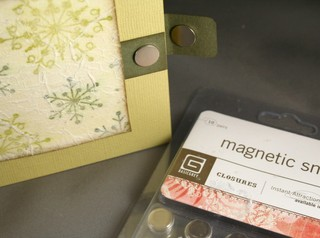 101307_magnetic_closure