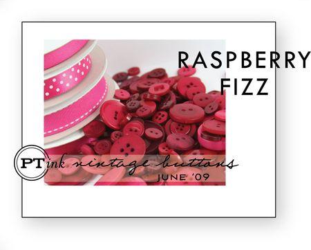 Raspberry-fizz-buttons