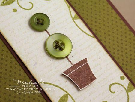 Topiary closeup