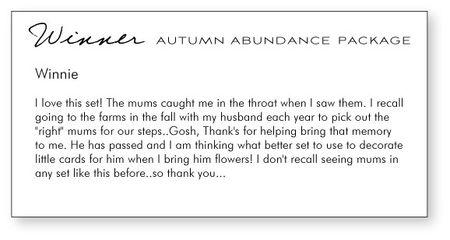 Autumn-abundance-winner