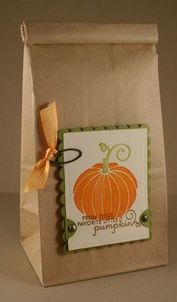 Pumpkin Bag