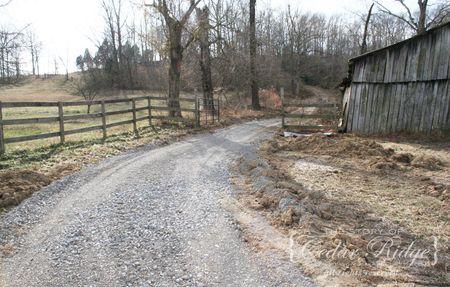 Driveway 4
