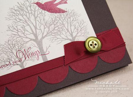Button bow closeup
