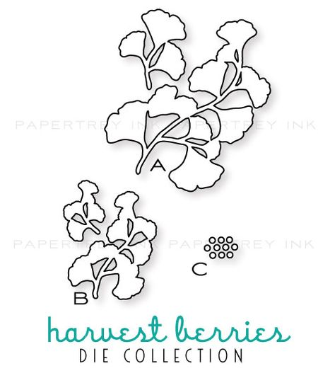Harvest-berries-dies