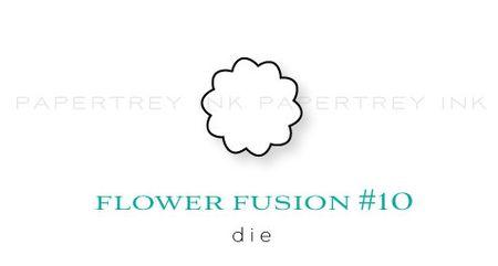 Flower-Fusion-#10-die