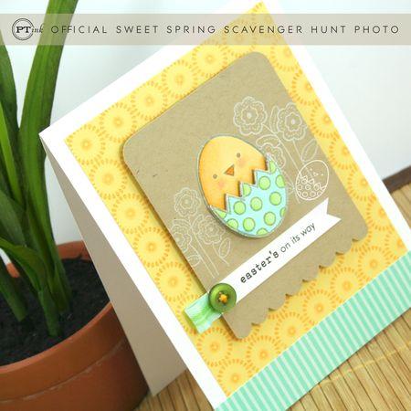Egg Hunt- Nichole