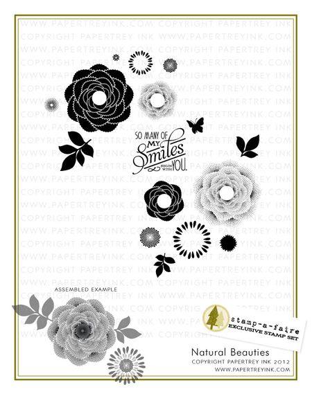 Natural-Beauties-webview