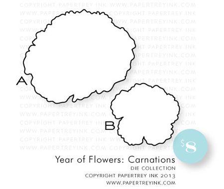 YOF-Carnations