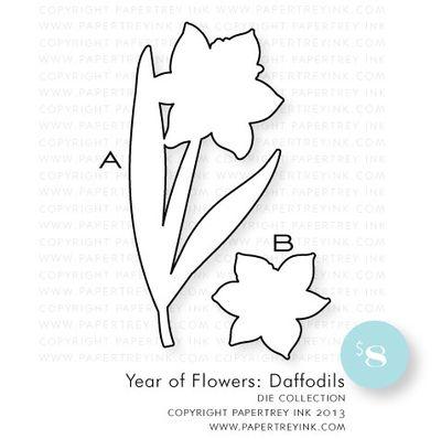 YOF-Daffodils