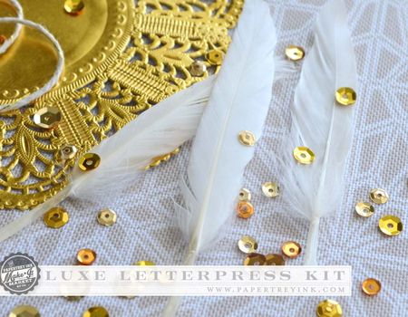 Luxe Letterpress feathers & sequins