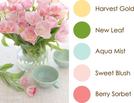 April 14 Color Play Image