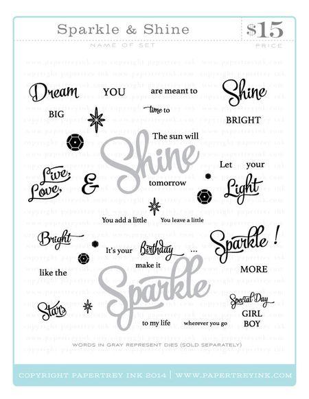 Sparkle-&-Shine-webview