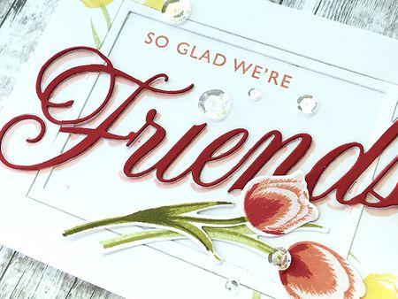 Friends- detail1
