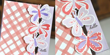 Butterfly Hope hello dtl