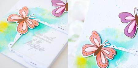 KT_Butterfly_2