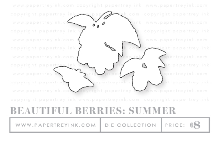 Beautiful-Berrries-Summer-dies