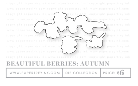 Beautiful-berries-autumn-dies