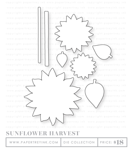 Sunflower-harvest-dies