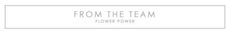 TEAMFLOWERPOWER-TITLE